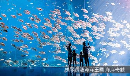 橫琴長隆海洋王國 海洋奇觀