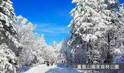 鳳凰山國家森林公園