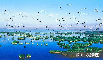 銀川沙湖景區