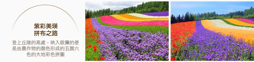 紫彩美瑛拼布之路
