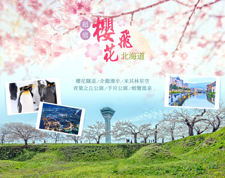 北海道櫻花