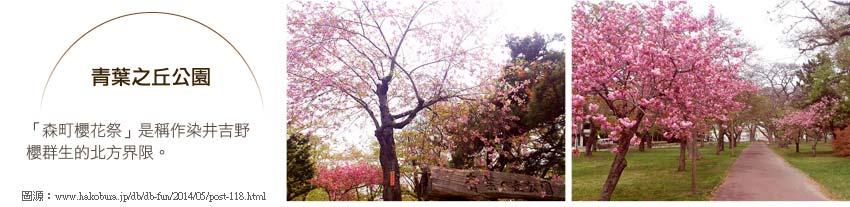 青葉之丘公園