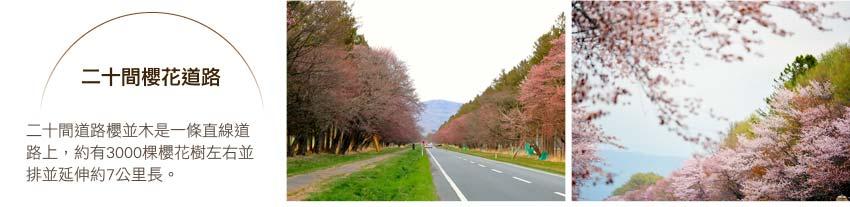 二十間櫻花道路