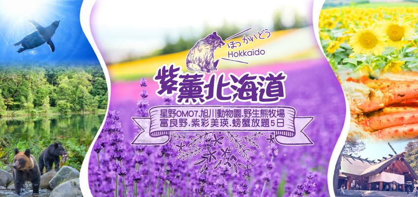 紫薰北海道星野OMO7旭川動物園野生熊牧場富良野紫彩美瑛螃蟹放題5日