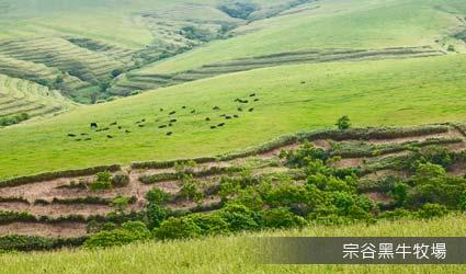 宗谷黑牛牧場