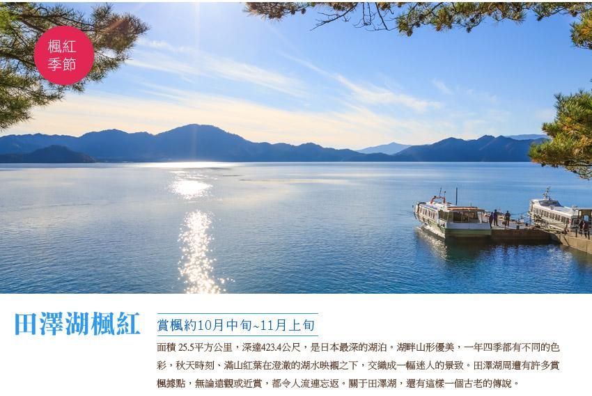 田澤湖楓紅