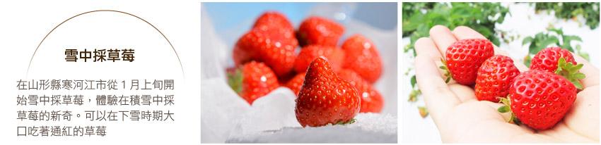 雪中採草莓