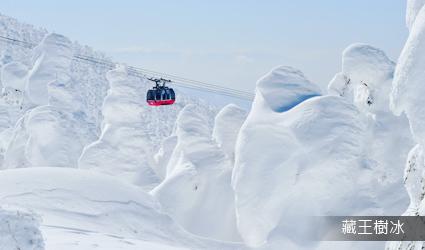藏王樹冰(安排搭乘纜車搭乘纜車