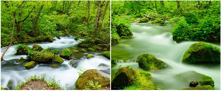 奧入瀨溪散策