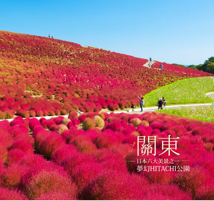 關東日本六大美景之一夢幻HITCHI公園