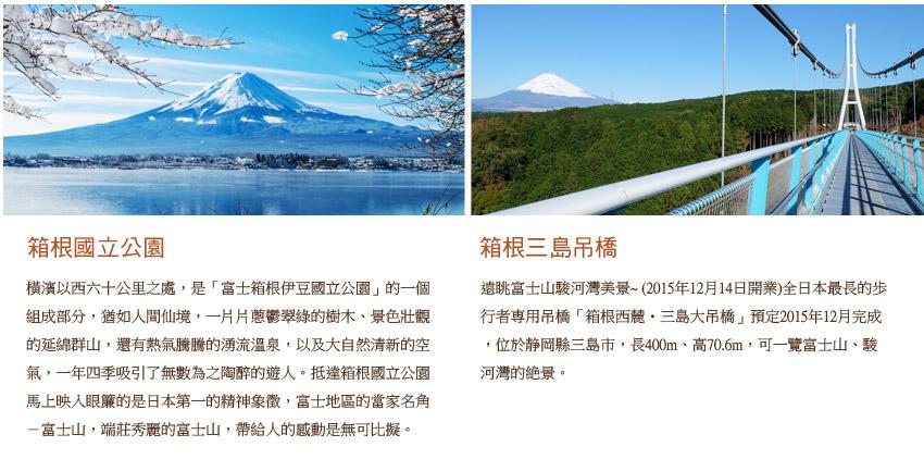 箱根國立公園.箱根三島吊橋
