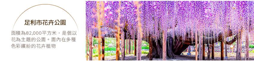 足利市花卉公園