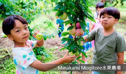"Minakami""Mogitore""水果農場"