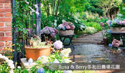 Rosa & Berry多和田農場花園
