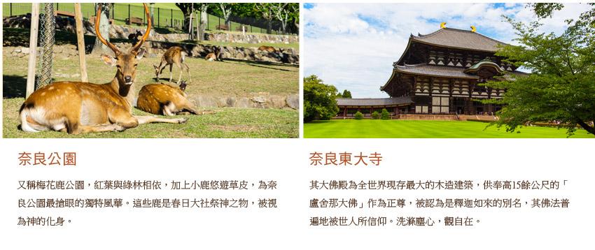 奈良公園.奈良東大寺