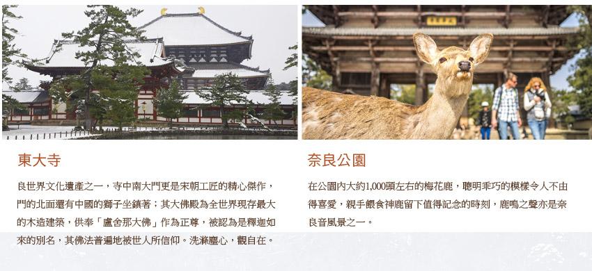 東大寺.奈良公園