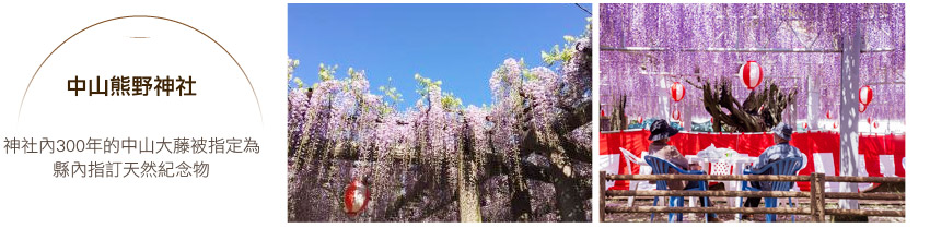 中山熊野神社