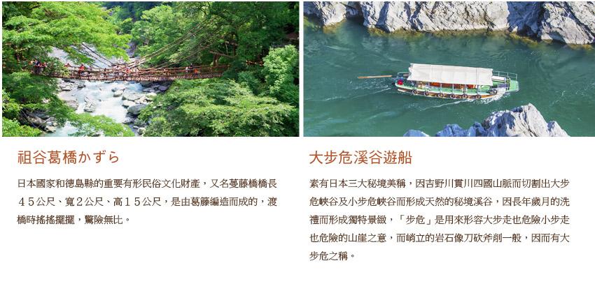 祖谷葛橋.大步危溪遊船