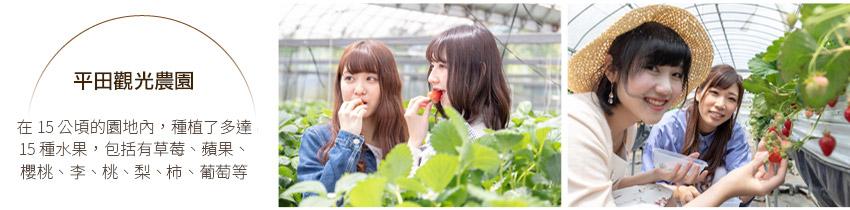 平田觀光農園