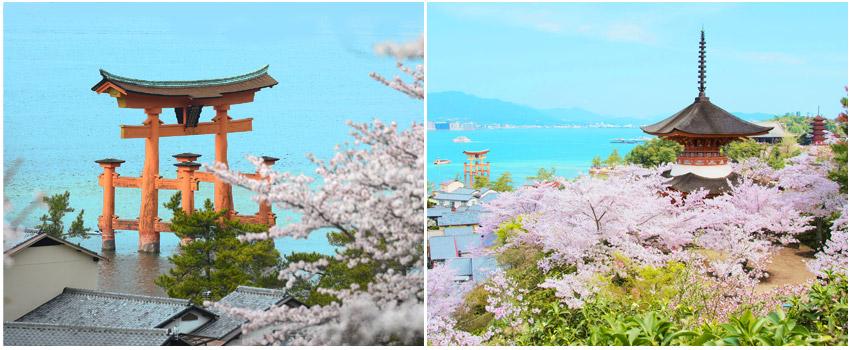 宮島~嚴島神社宮島~嚴島神社