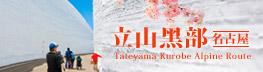 山富旅遊︱名古屋.立山黑部︱春櫻夏樂
