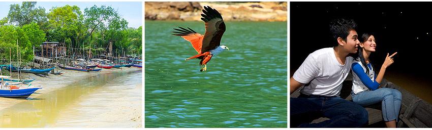 雪蘭莪生態之旅、餵老鷹、夜遊螢火蟲