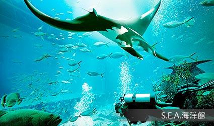 S.E.A.海洋館