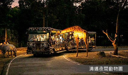 清邁夜間動物園(CHIANGMAI NIGHT SAFARI)
