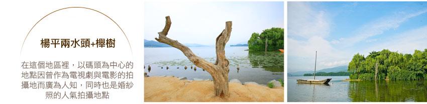 楊平兩水頭、櫸樹