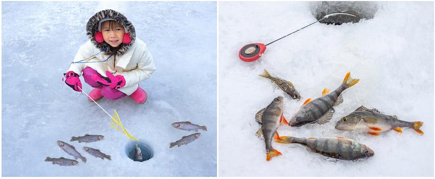 華川山鱒魚冰雕節含門票+冰上釣魚+烤鱒魚+雪橇+室內冰雕