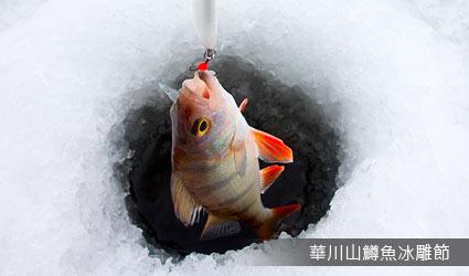 華川山鱒魚冰雕節