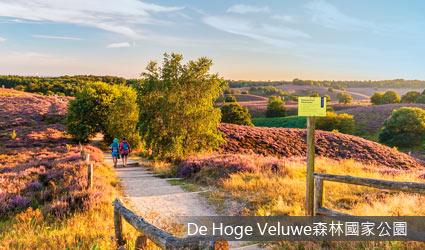 荷蘭_DeHogeVeluwe森林國家公園