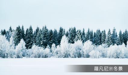 芬蘭_羅凡尼米冬景