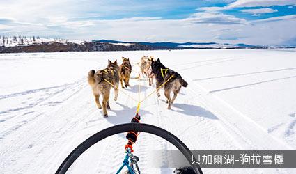 俄羅斯_狗拉雪橇體驗