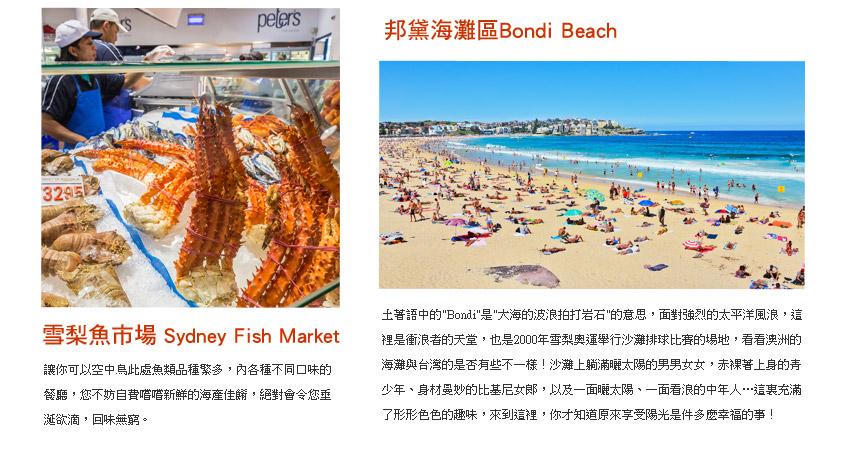 雪梨魚市場.邦黛海灘區