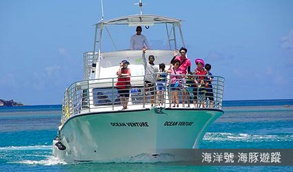 海洋號 海豚遊蹤