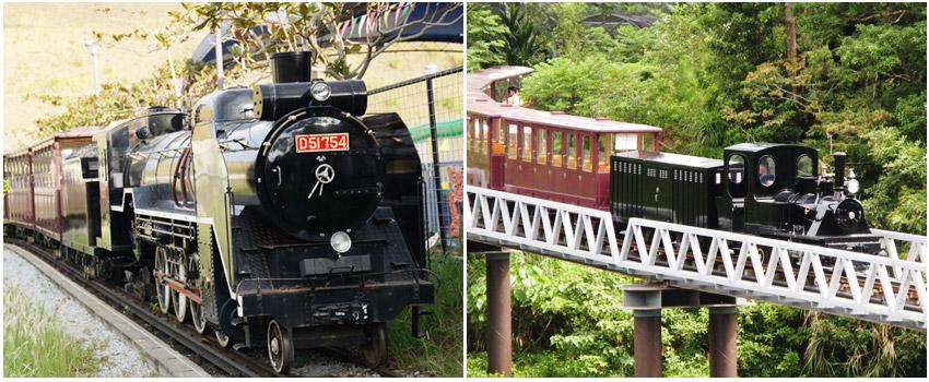 名護自然動植物公園_小火車