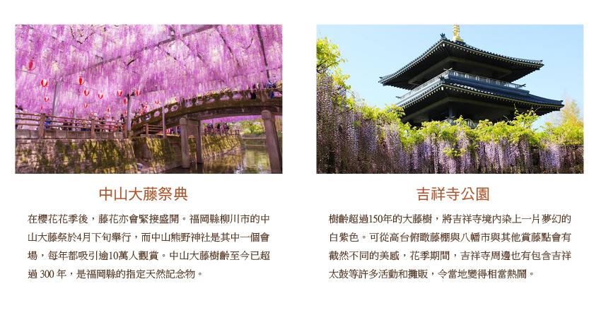 中山大騰祭典_吉祥寺公園