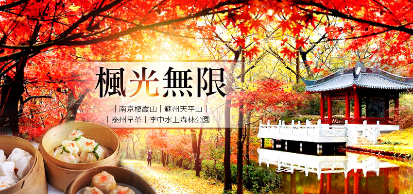 風光無限南京banner