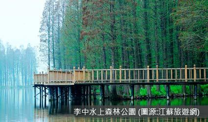 李中水上森林公園