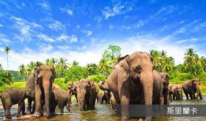 斯里蘭卡2