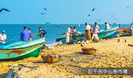 斯里蘭卡_尼干布中心魚市場