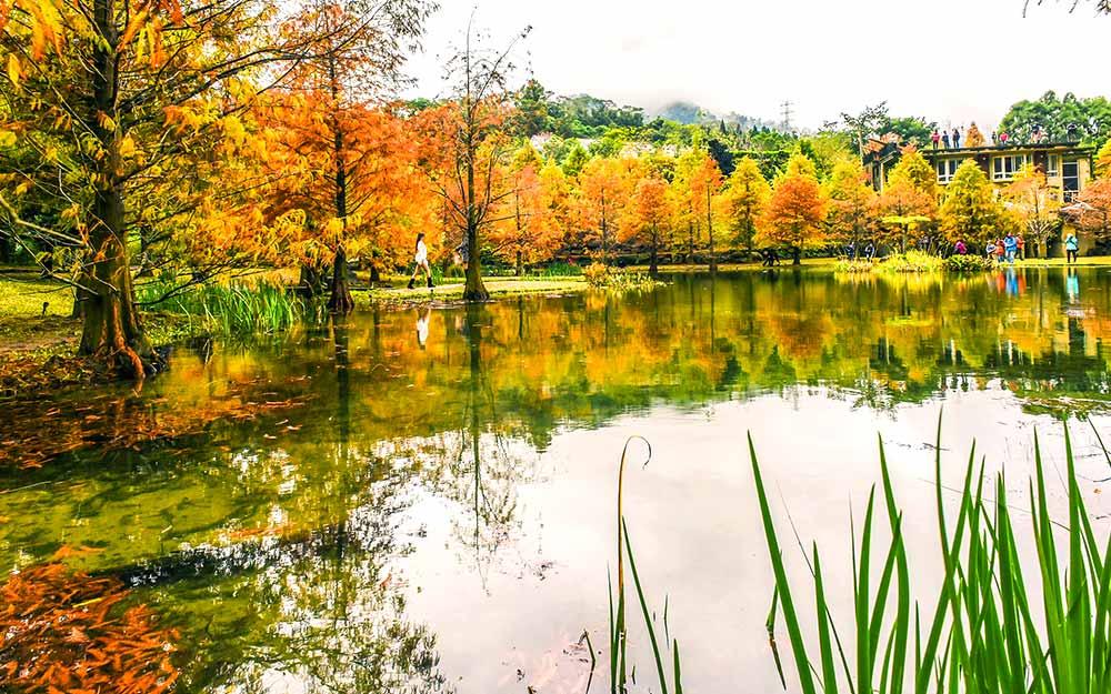 HUN03201015A cover photo